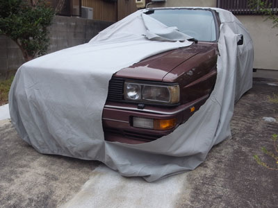 carcover2.jpg